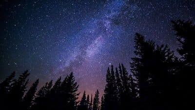 Ночной лес - звуки природы для сна и отдыха