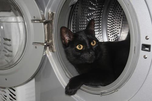 неприятный запах из стиральной машины как избавиться