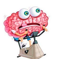 Упражнения для обоих полушарий мозга