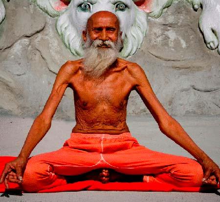 Йога и вегетарианство - можно ли есть мясо йогам